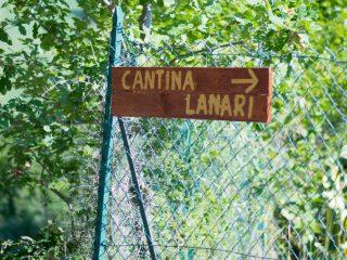 Degustazioni in cantina al Parco del Conero? Si può!